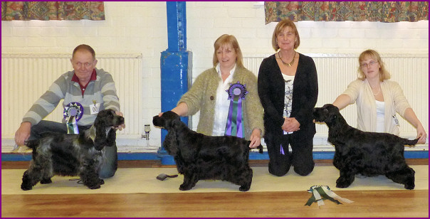 Best In Show Jan 2011