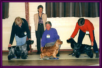 Best In Show January 2001